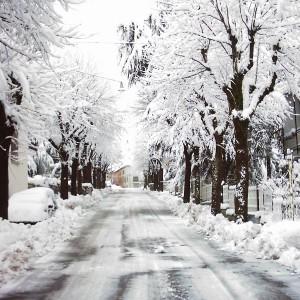 savigno-nevicata-febbraio-2005